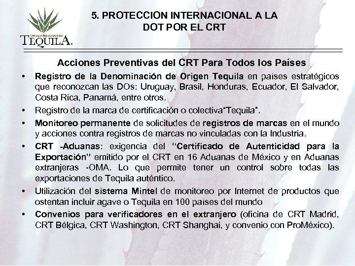 5. PROTECCION INTERNACIONAL A LA DOT POR EL CRT Acciones Preventivas del CRT Para