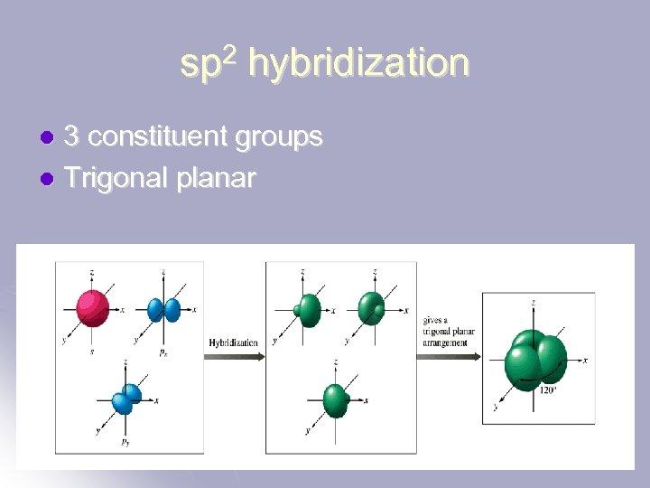 sp 2 hybridization 3 constituent groups l Trigonal planar l