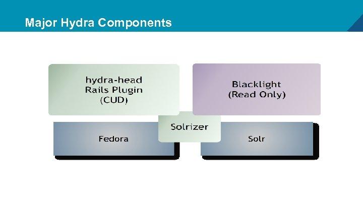 Major Hydra Components