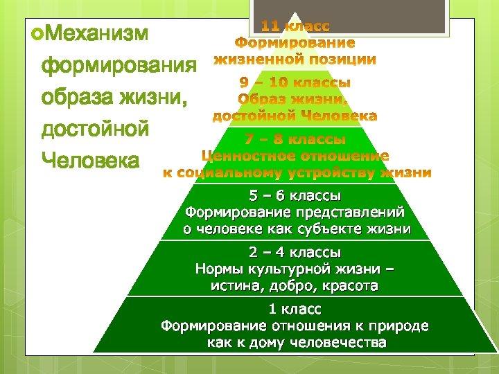 Механизм формирования образа жизни, достойной Человека 5 – 6 классы Формирование представлений о