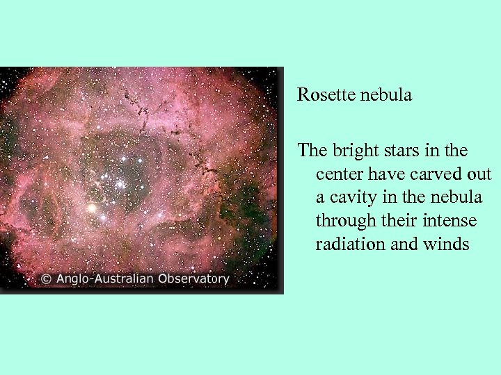 Rosette nebula The bright stars in the center have carved out a cavity in