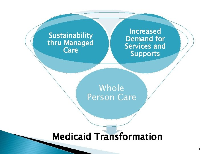 Sustainability thru Managed Care Increased Demand for Services and Supports Whole Person Care Medicaid
