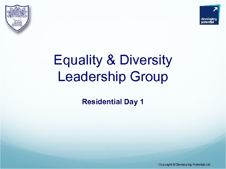 Equality & Diversity Leadership Group Residential Day 1 Copyright © Developing Potential Ltd