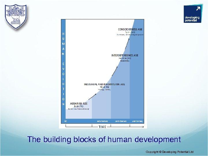 The building blocks of human development Copyright © Developing Potential Ltd