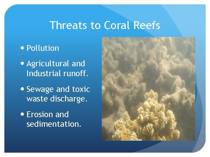Threats to Coral Reefs Pollution Agricultural and Industrial runoff. Sewage and toxic waste discharge.