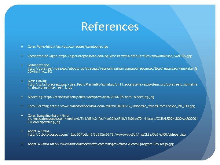 References Coral Polyp-http: //gc. kuty. cz/redsea/coralpolyp. jpg Zooxanthelae Algae-http: //agsci. oregonstate. edu/aquatic-bt/sites/default/files/zooxanthellae_SANTOS. jpg Sedimentationhttp:
