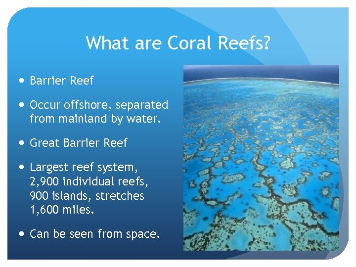 What are Coral Reefs? Barrier Reef Occur offshore, separated from mainland by water. Great