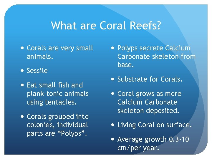 What are Coral Reefs? Corals are very small animals. Sessile Eat small fish and