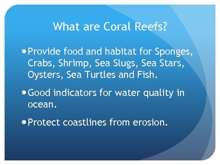 What are Coral Reefs? Provide food and habitat for Sponges, Crabs, Shrimp, Sea Slugs,