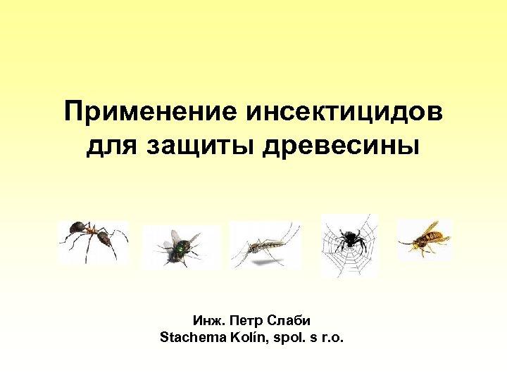 Применение инсектицидов для защиты древесины Инж. Петр Слаби Stachema Kolín, spol. s r. o.