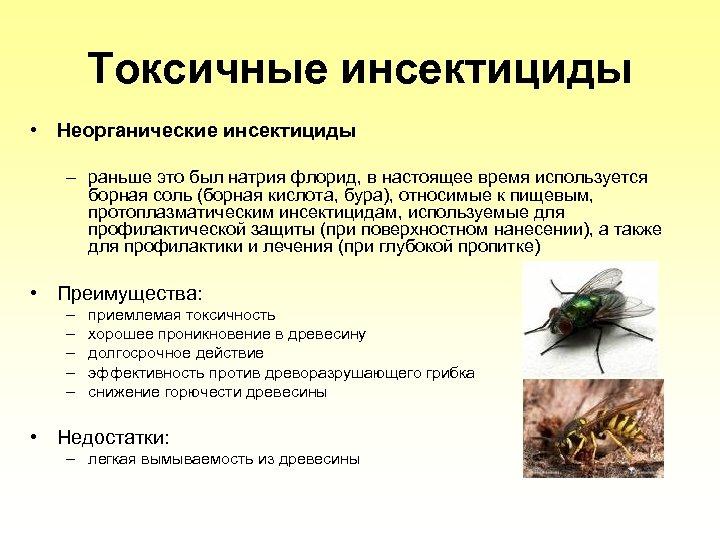 Tоксичные инсектициды • Неорганические инсектициды – раньше это был натрия флорид, в настоящее время