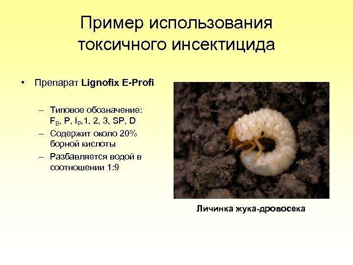 Пример использования токсичного инсектицида • Препарат Lignofix E-Profi – Типовое обозначение: FB, P, IP,