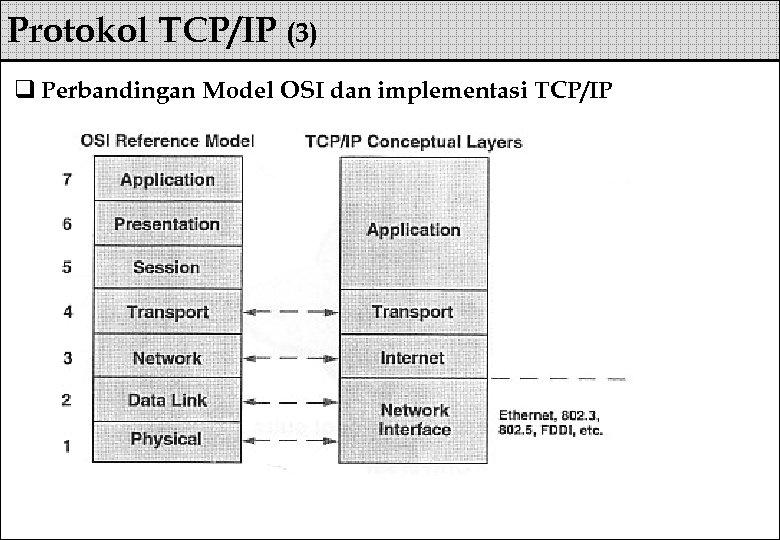 Protokol TCP/IP (3) q Perbandingan Model OSI dan implementasi TCP/IP