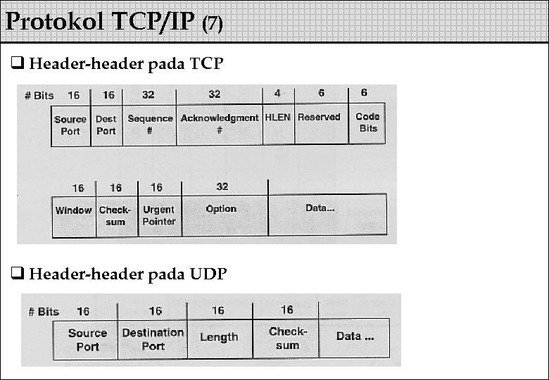 Protokol TCP/IP (7) q Header-header pada TCP q Header-header pada UDP