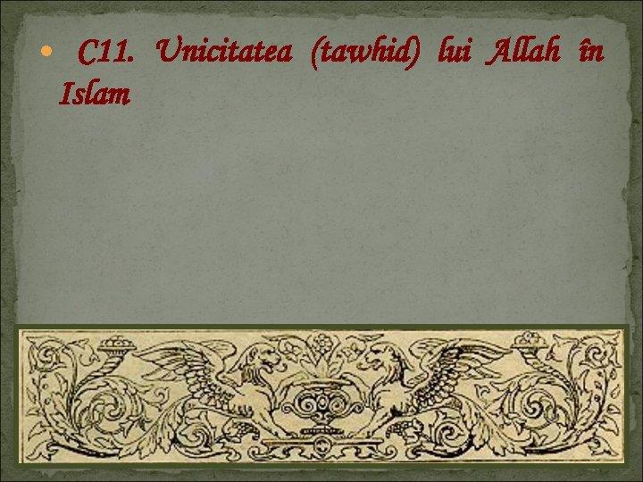 C 11. Unicitatea (tawhid) lui Allah în Islam