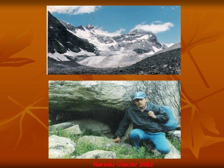Naradu Glacier 2002