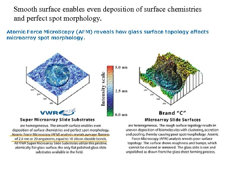 Smooth surface enables even deposition of surface chemistries and perfect spot morphology.
