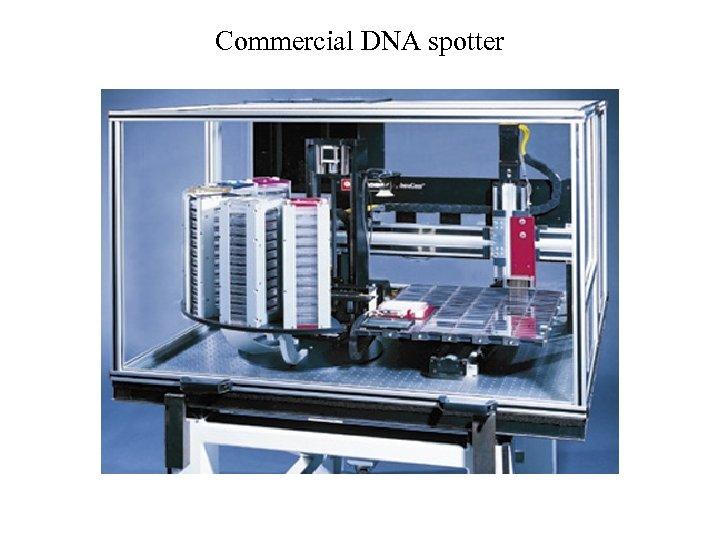Commercial DNA spotter