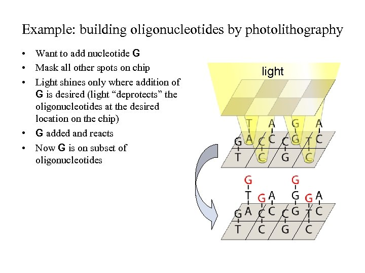 Example: building oligonucleotides by photolithography • Want to add nucleotide G • Mask all
