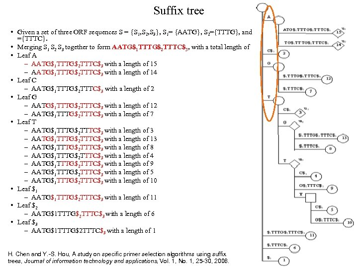 Suffix tree • Given a set of three ORF sequences S = {S 1,