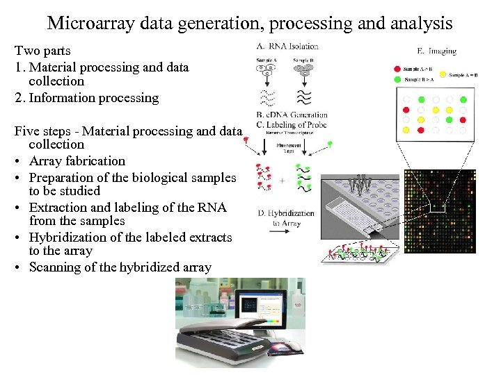 Microarray data generation, processing and analysis Two parts 1. Material processing and data collection