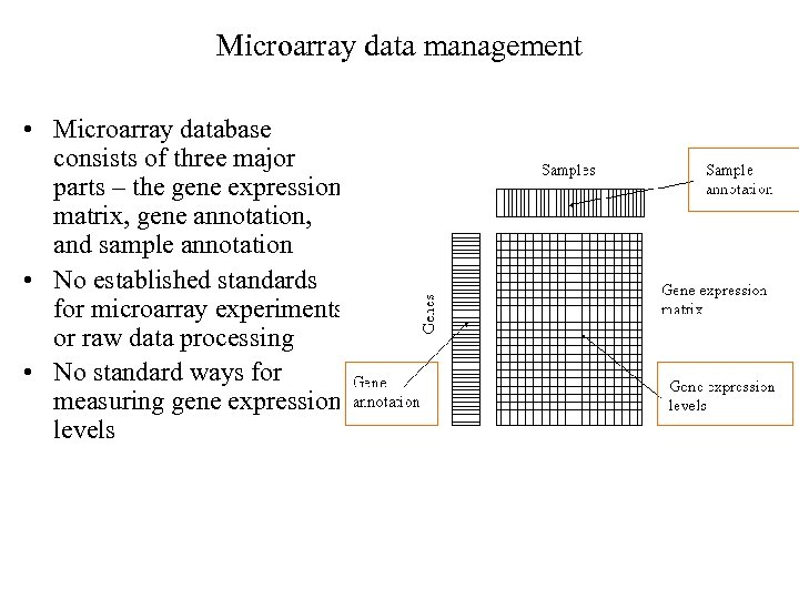 Microarray data management • Microarray database consists of three major parts – the gene