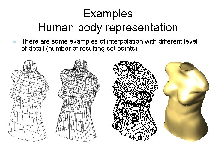 Examples Human body representation n There are some examples of interpolation with different level
