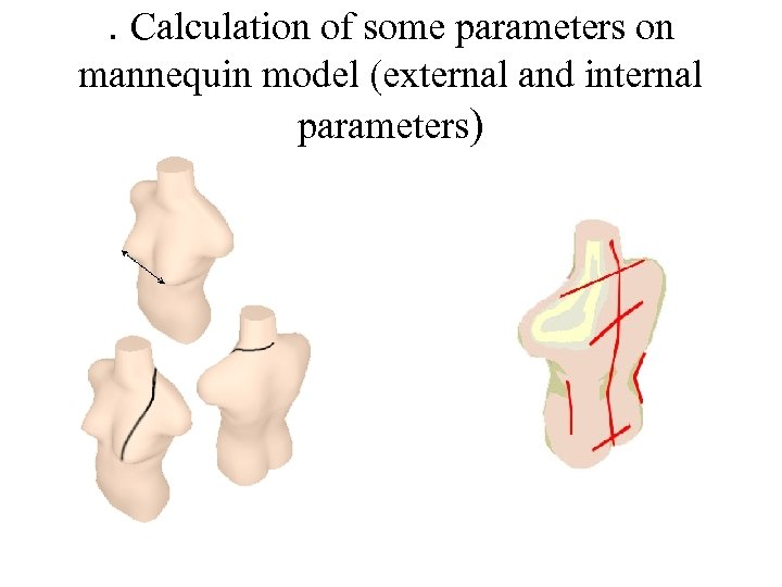 . Calculation of some parameters on mannequin model (external and internal parameters)