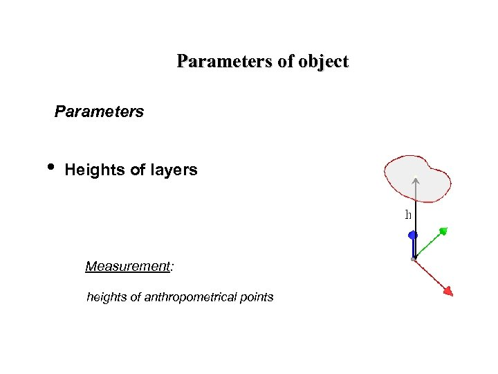 Parameters of object Parameters • Heights of layers Measurement: heights of anthropometrical points