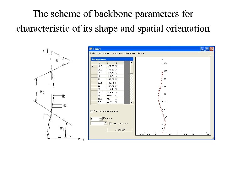 The scheme of backbone parameters for characteristic of its shape and spatial orientation