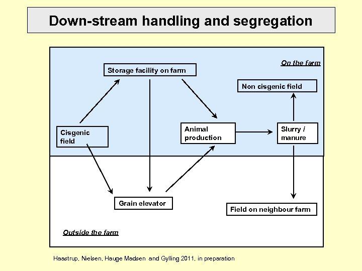 Down-stream handling and segregation On the farm Storage facility on farm Non cisgenic field