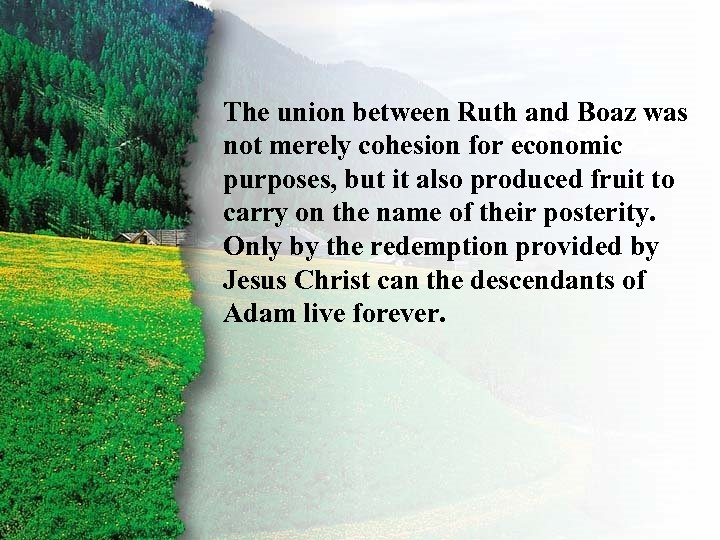 III. Ruth's Rewards B was The union between Ruth and Boaz not merely cohesion