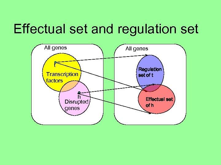 Effectual set and regulation set All genes t Transcription factors h Disrupted genes All