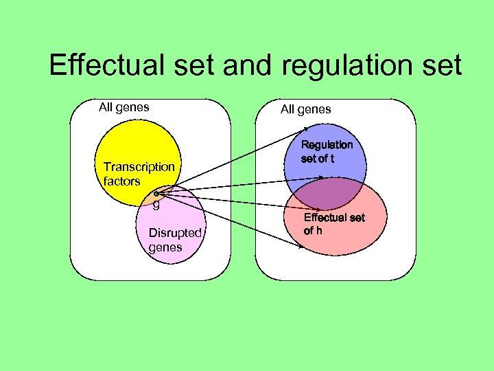 Effectual set and regulation set All genes Transcription factors g Disrupted genes Regulation set