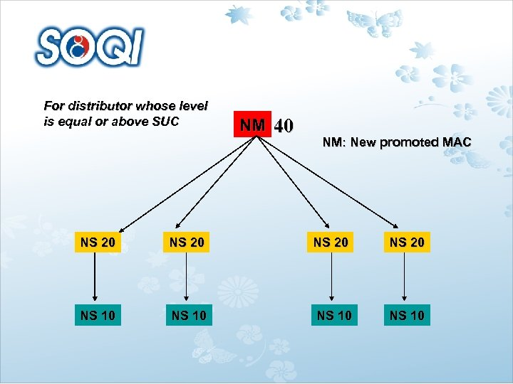 For distributor whose level is equal or above SUC NS 20 NS 10 NM
