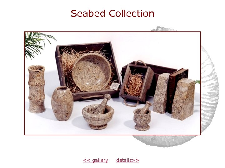 Seabed Collection << gallery details>>