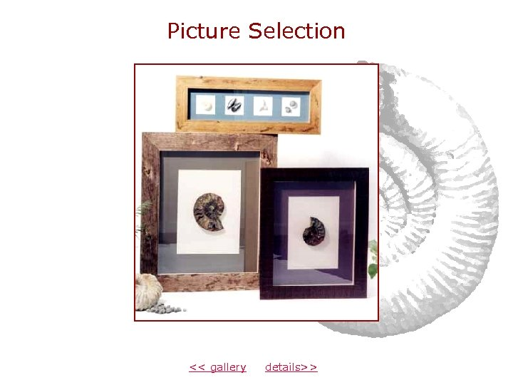 Picture Selection << gallery details>>