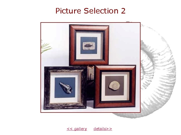 Picture Selection 2 << gallery details>>