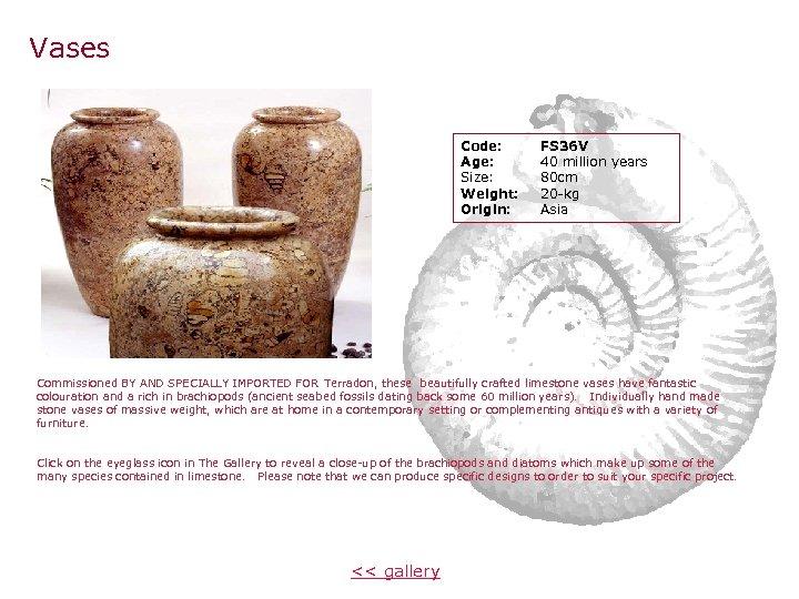 Vases Code: Age: Size: Weight: Origin: FS 36 V 40 million years 80 cm