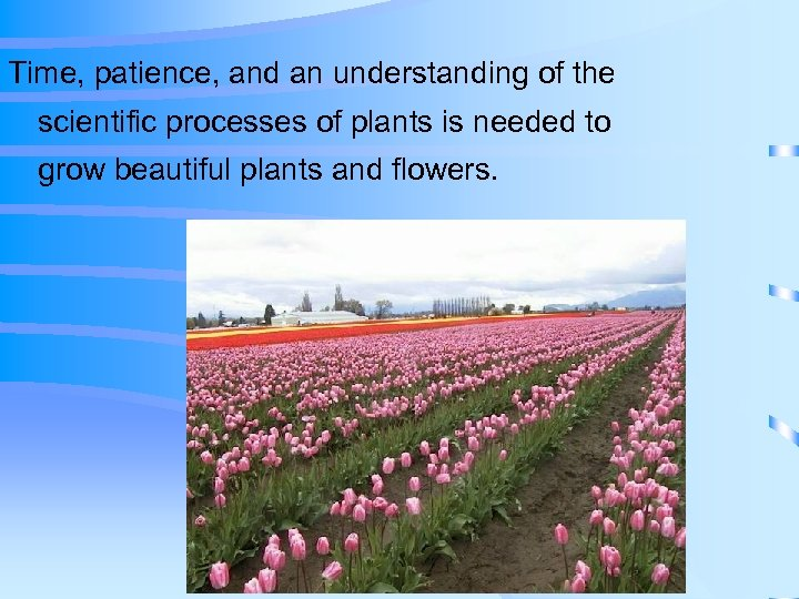 Time, patience, and an understanding of the scientific processes of plants is needed to