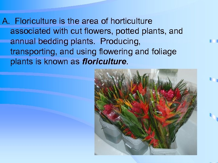 A. Floriculture is the area of horticulture associated with cut flowers, potted plants, and