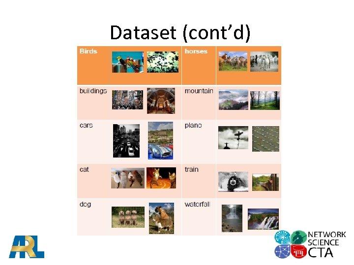 Dataset (cont'd)