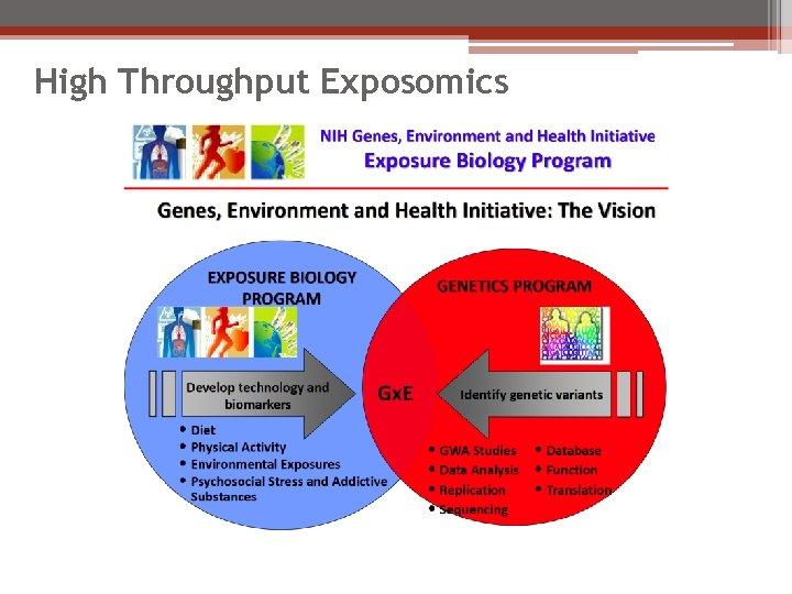 High Throughput Exposomics