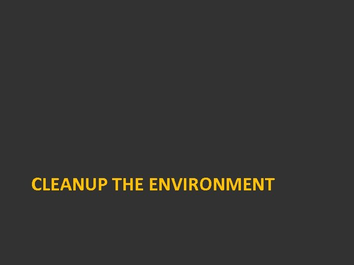 CLEANUP THE ENVIRONMENT