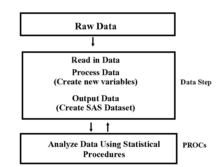 Raw Data Read in Data Process Data (Create new variables) Data Step Output Data