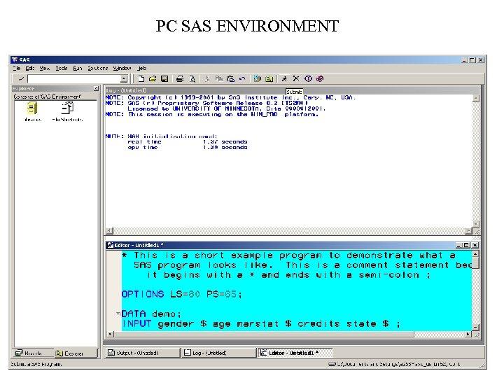 PC SAS ENVIRONMENT