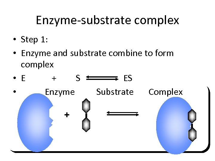 Enzyme-substrate complex • Step 1: • Enzyme and substrate combine to form complex •