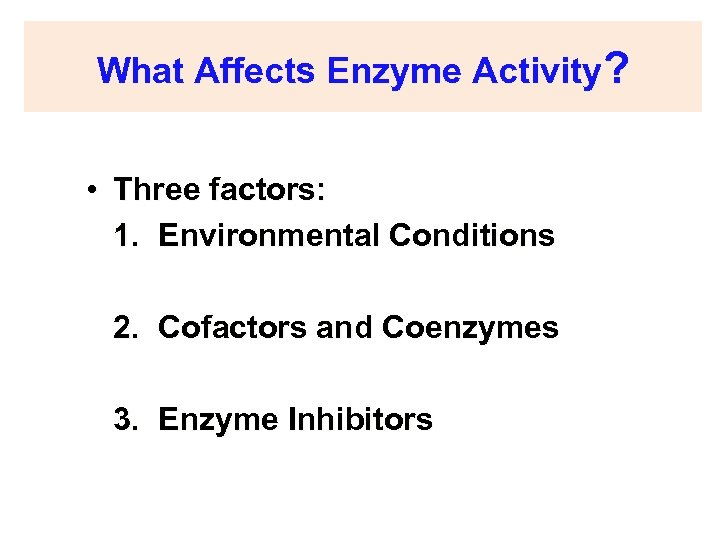 What Affects Enzyme Activity? • Three factors: 1. Environmental Conditions 2. Cofactors and Coenzymes