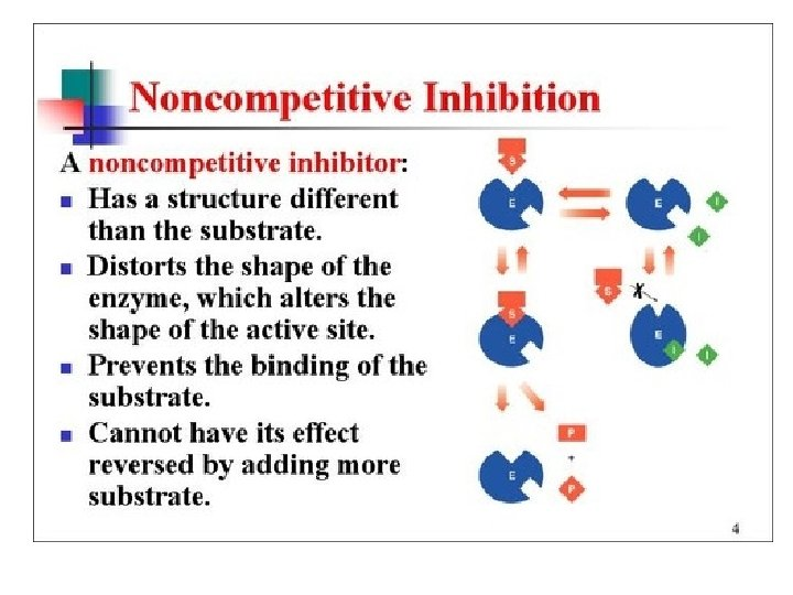 Enzyme Inhibitors • Noncompetitive