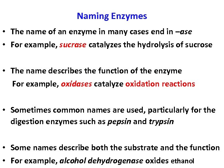 Naming Enzymes • The name of an enzyme in many cases end in –ase